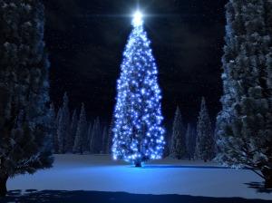 božićna sreća