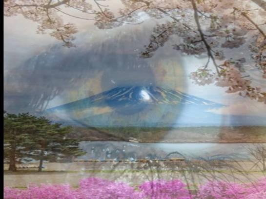 japansko oko
