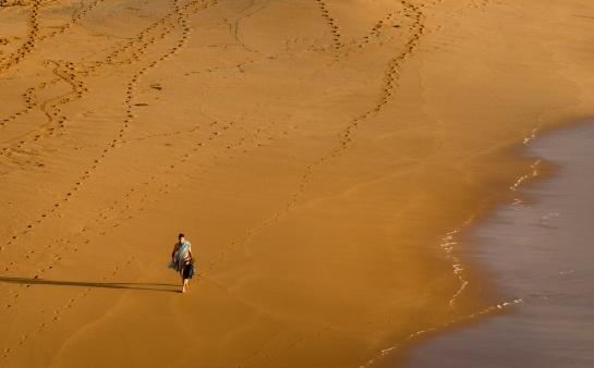 colin-bates,tracks,beach-sand-tracks-swimmer-beaches-northern-avalon